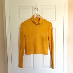 🍯Mustard Cropped Ribbed Turtle Neck